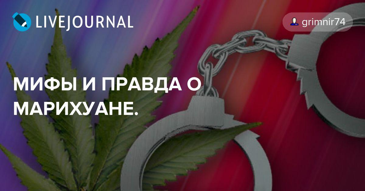 Мифы и правда о марихуаны конопля ямайки