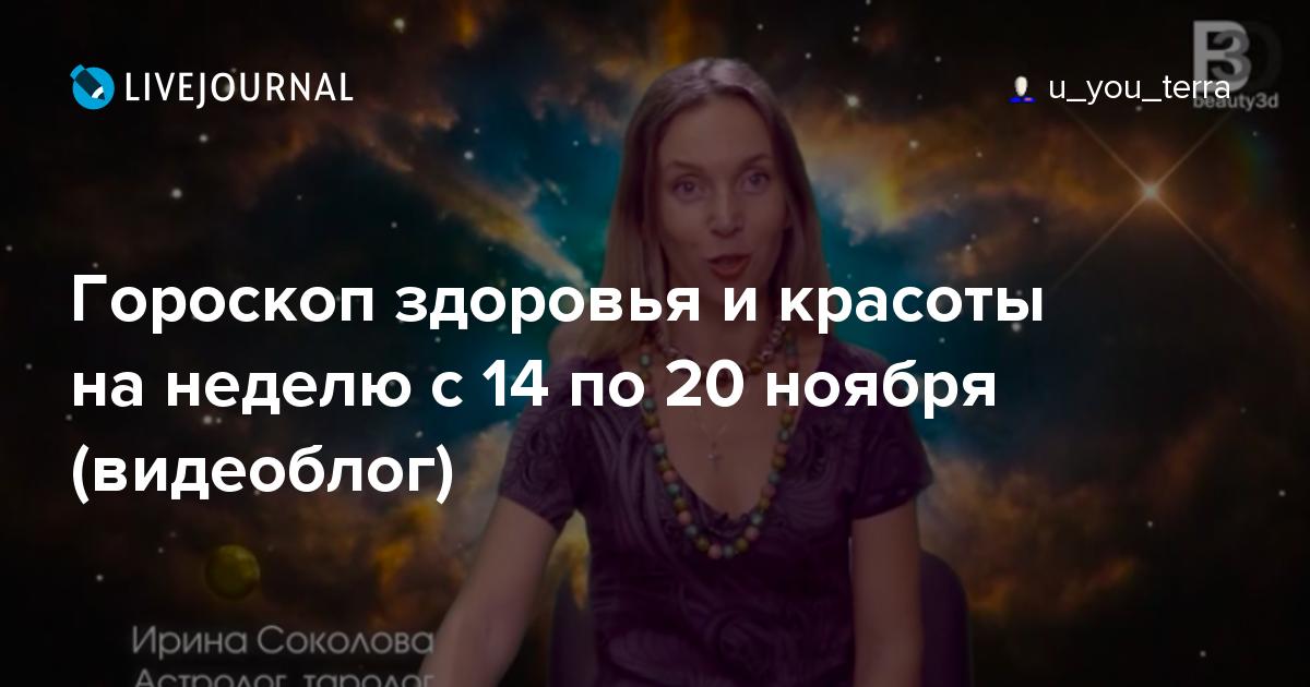 Людмила шишкина подала документы на пост главы димитровграда.
