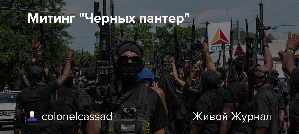 "Митинг ""Черных пантер"""