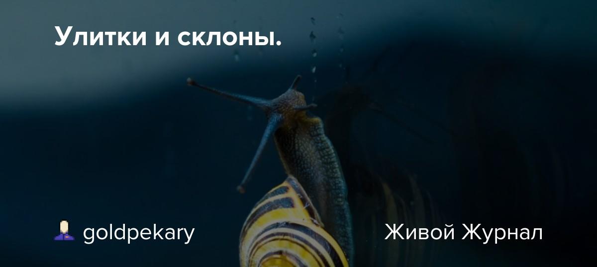 eblya-nuzhna-pri-lovle-bloh-gromova-golaya-porno