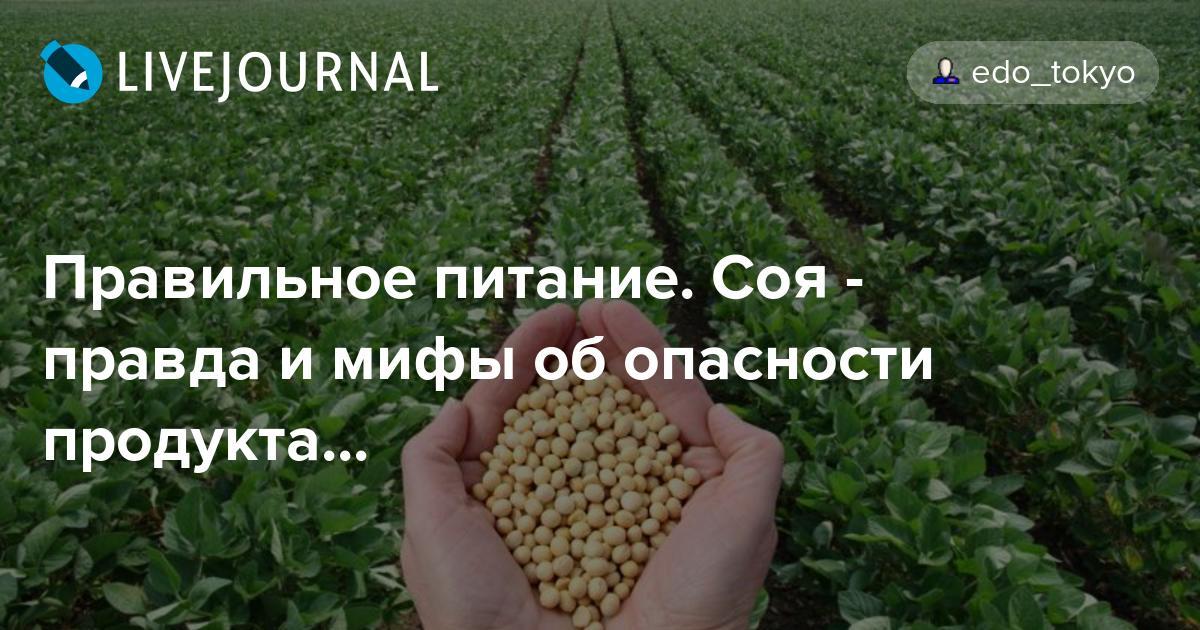 Правильное питание. Соя - правда и мифы об опасности продукта...: edo_tokyo — LiveJournal