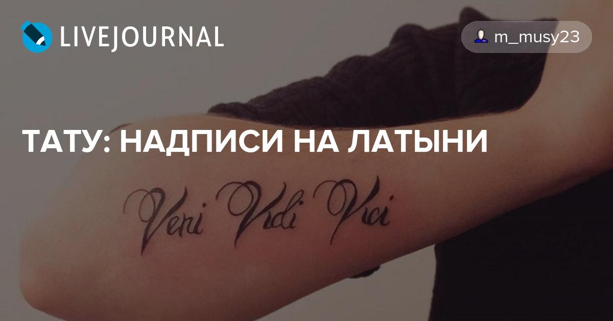 Фото тату на латыни надписи на спине