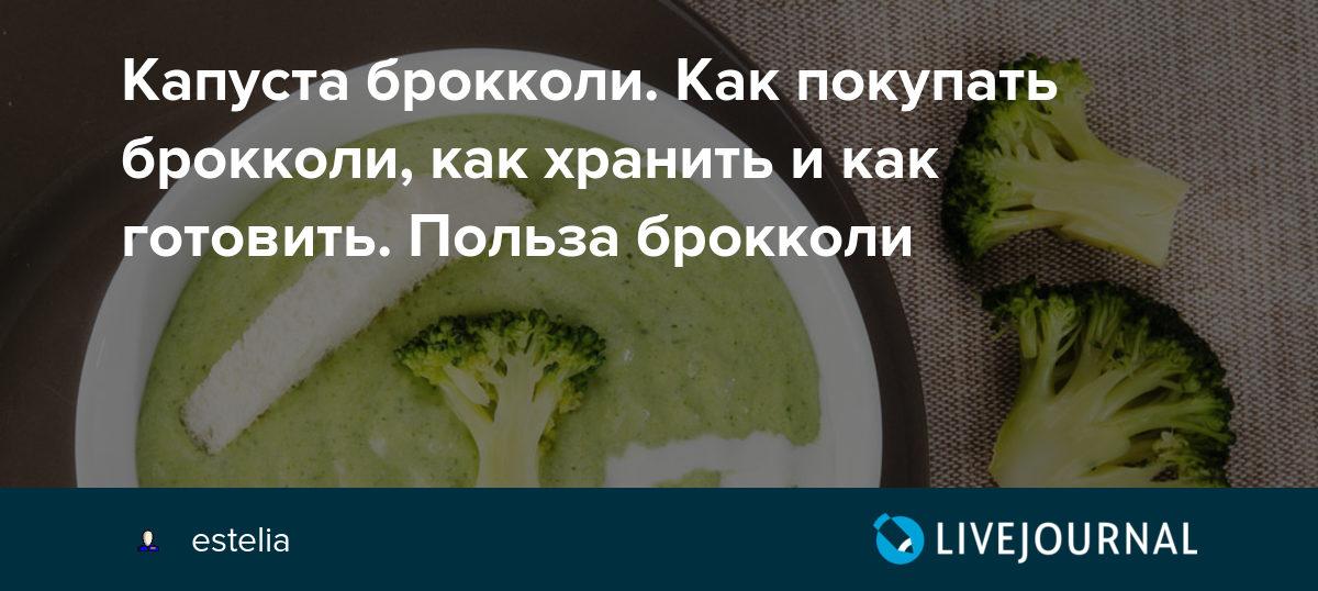 Капуста брокколи. Как покупать брокколи, как хранить и как готовить. Польза брокколи - Дорога