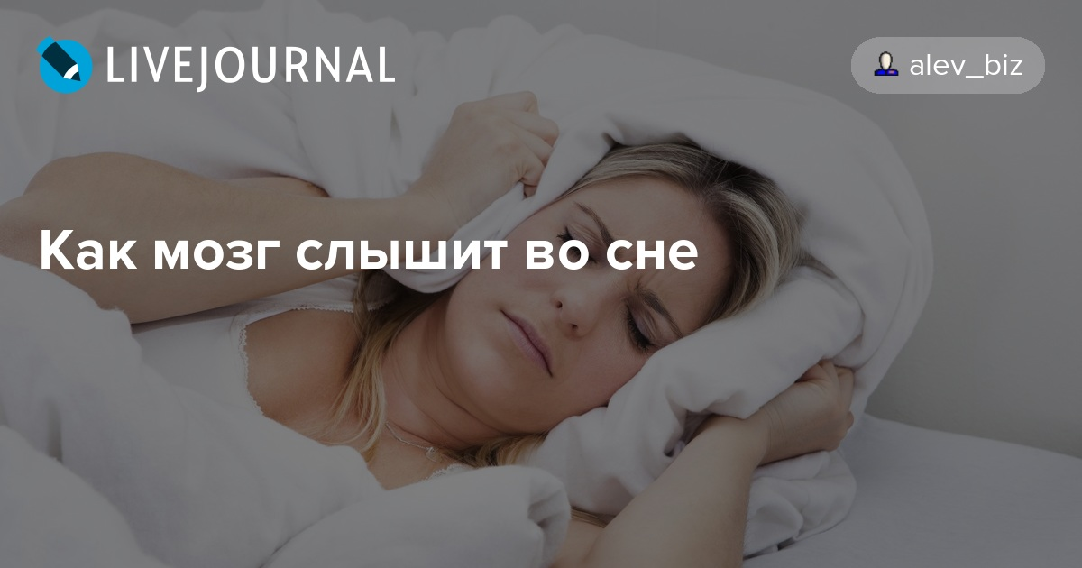 Испугаться их во сне означает, что вас ждут тяжелые испытания или же вы можете пострадать из-за неверно принятого решения.