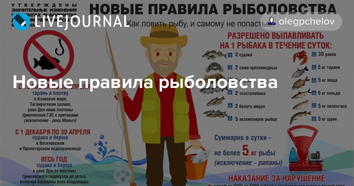 Правила ловли рыбы в рязанской области