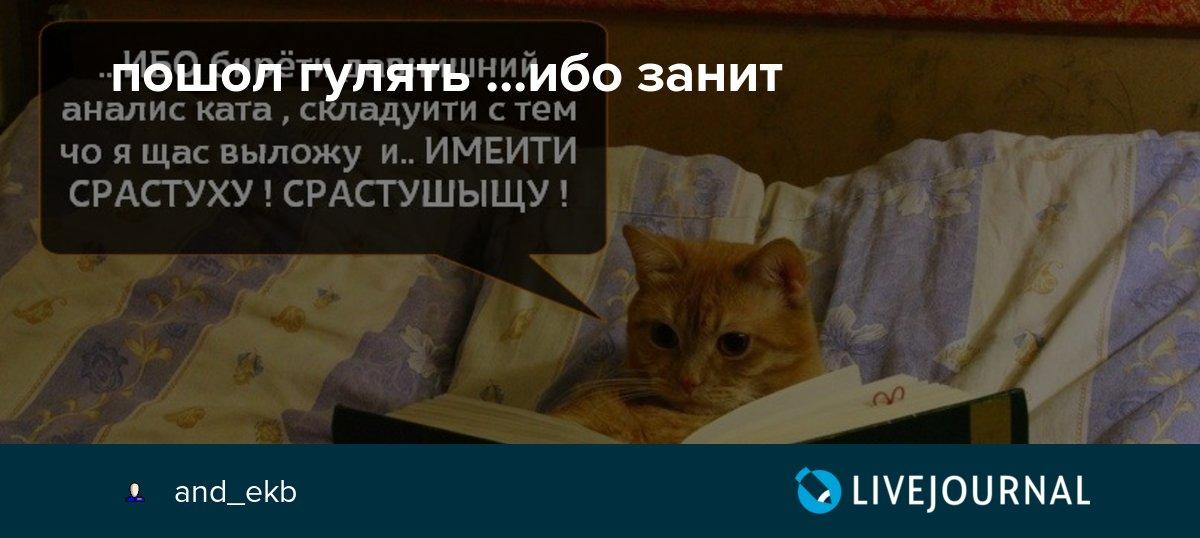 занит деньги по паспорту москва
