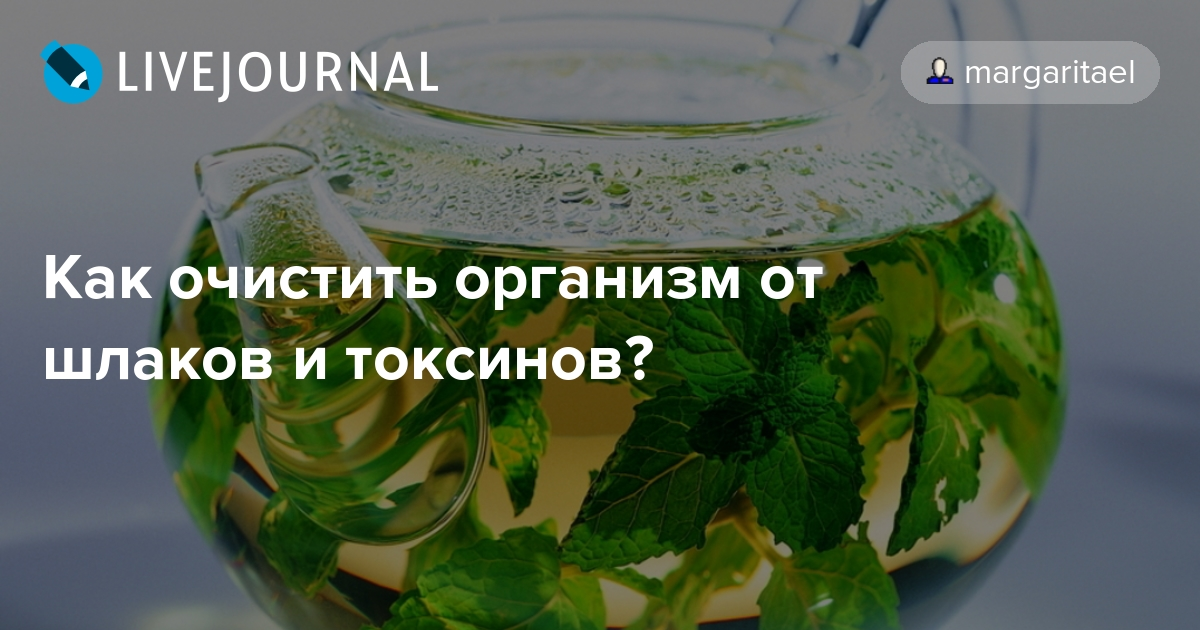 Как очистить организм от шлаков и токсинов?: margaritael