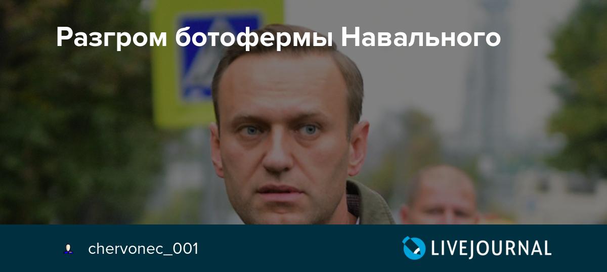 Разгром ботофермы Навального
