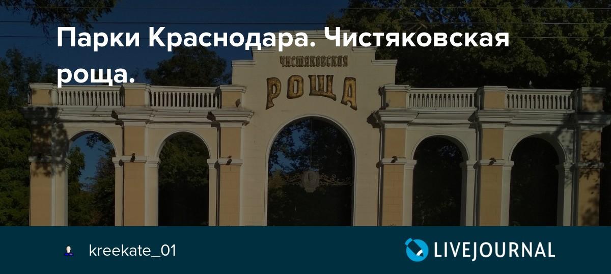 Парк Чистяковская роща в Краснодаре: фото, аттракционы, кинотеатр | 538x1200