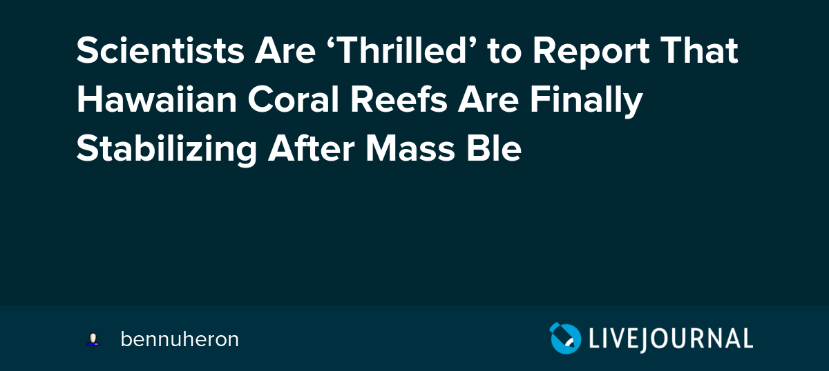7a6573952b0b Scientists Are  Thrilled  to Report That Hawaiian Coral Reefs Are Finally  Stabilizing After Mass Ble  bennuheron