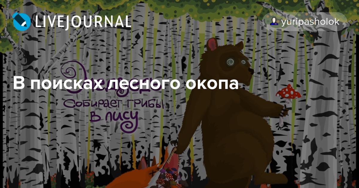создаем медведь собирает грибы лису картинка так ставьте