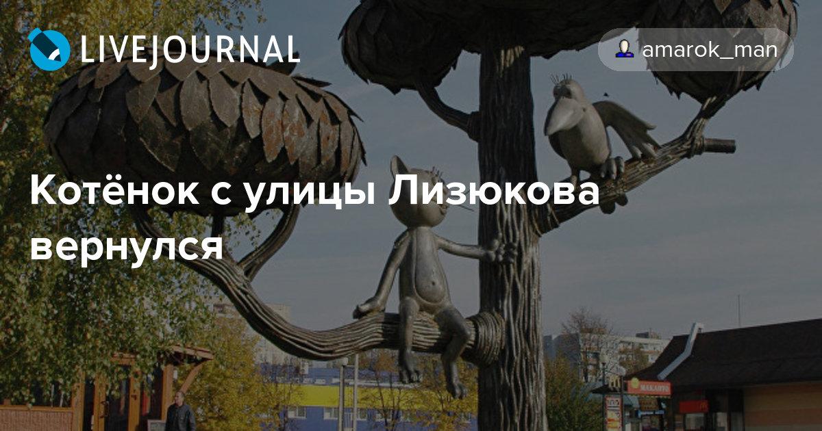 Котёнок с улицы Лизюкова вернулся : amarok_man — LiveJournal