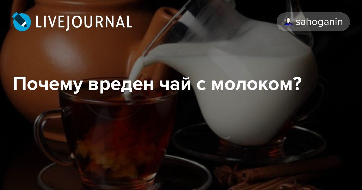 Вредно или нет чай с молоком