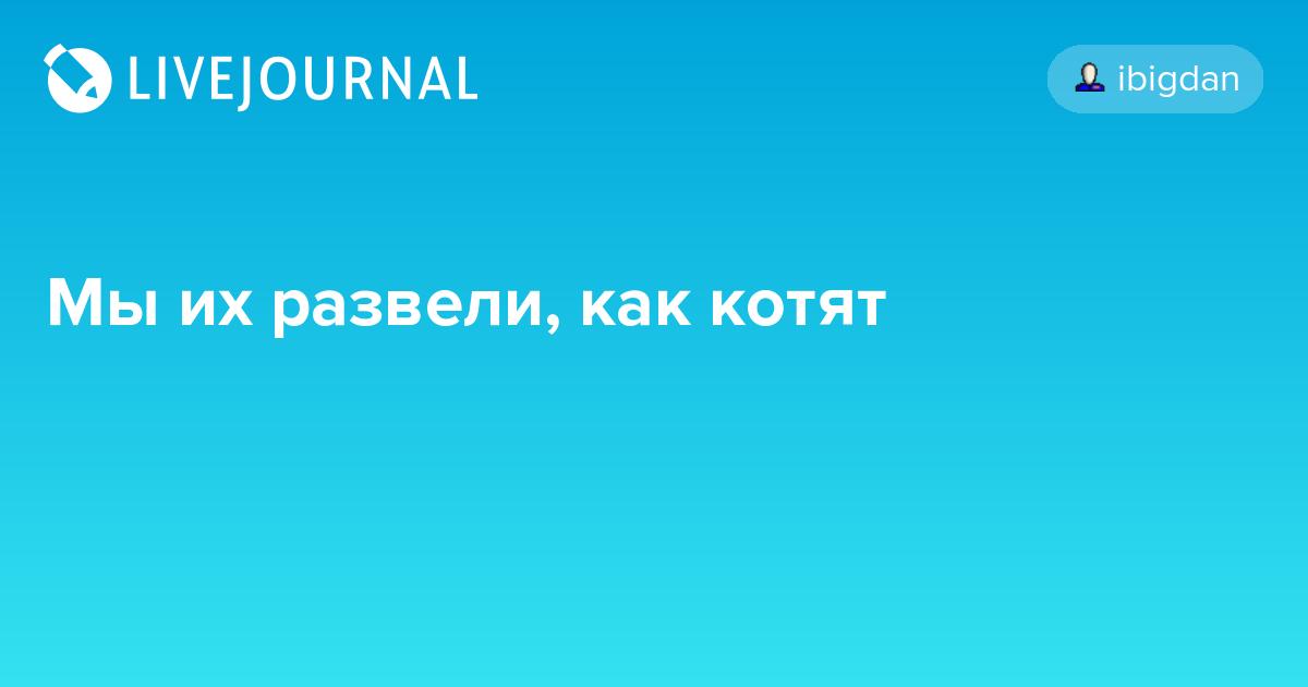Запрет российских соцсетей может облегчить работу полиции, - Крищенко - Цензор.НЕТ 4322