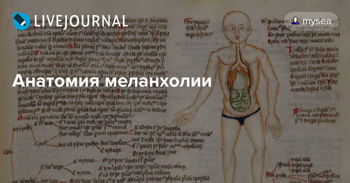 Секс анатомия в мульте
