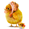 e_vikyra sent you a chicken