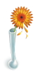 ishura sent you a gerbera daisy.