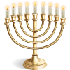 Someone sent you a Menorah!