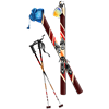 edik_m sent you some Skis!