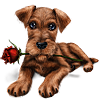 valyssia sent you an adorable Puppy!