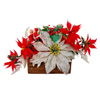 newelichka sent you a beautiful poinsettia!