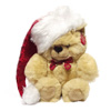 ginginthegenius sent you a cuddly Santa bear!