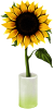 green_aurora sent you a sunflower.