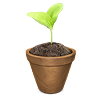 green_maia sent you a flowerpot!