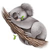 kazluvsbooks sent you a cute Koala!